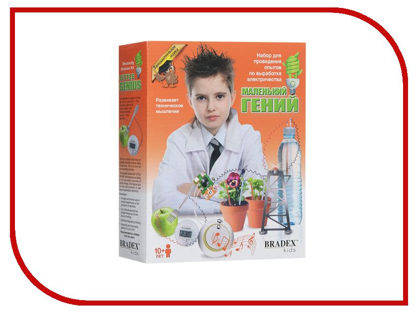 Игра Bradex Маленький Гений DE 0122 маленький гений плакат маленький гений строение тела человека