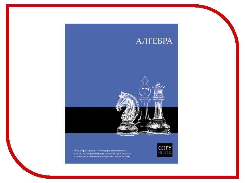 Тетрадь Феникс+ A5 48 листов Алгебра 47059 тетрадь 48л а5 клетка феникс предметная серия яркие знания алгебра 47059