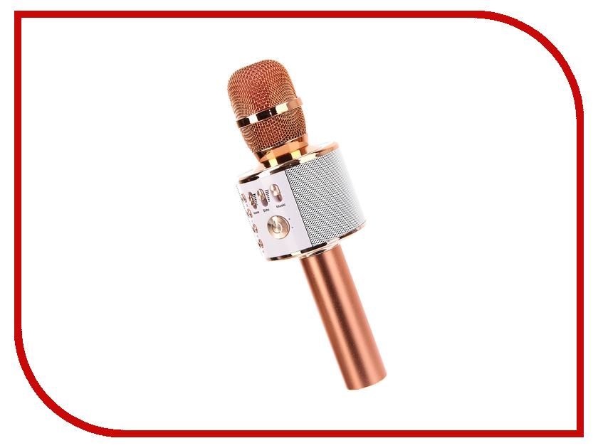 Караоке Handheld KTV Q37RG Pink-Gold handheld