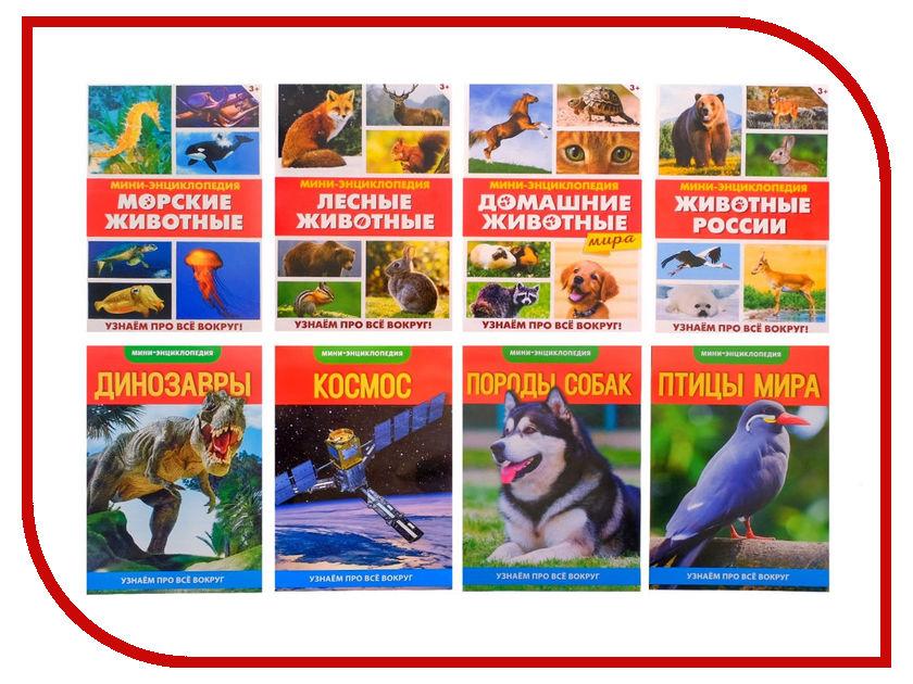 Обучающая книга Буква-ленд Узнаем про все вокруг №2, набор 3415637