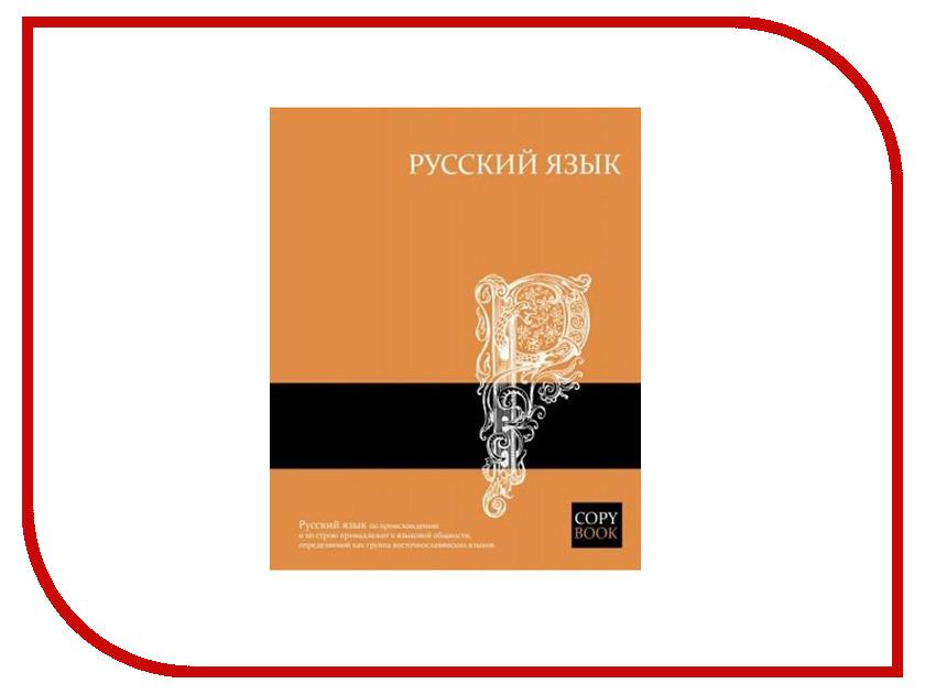 Тетрадь Феникс+ А5 48 листов Яркие знания Русский язык 47068 феникс русский язык 1 4 классы