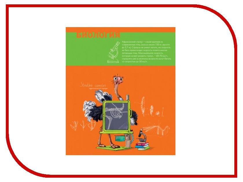 Тетрадь Феникс+ A5 48 листов Биология 44324 тетрадь феникс a5 48 листов история 44323