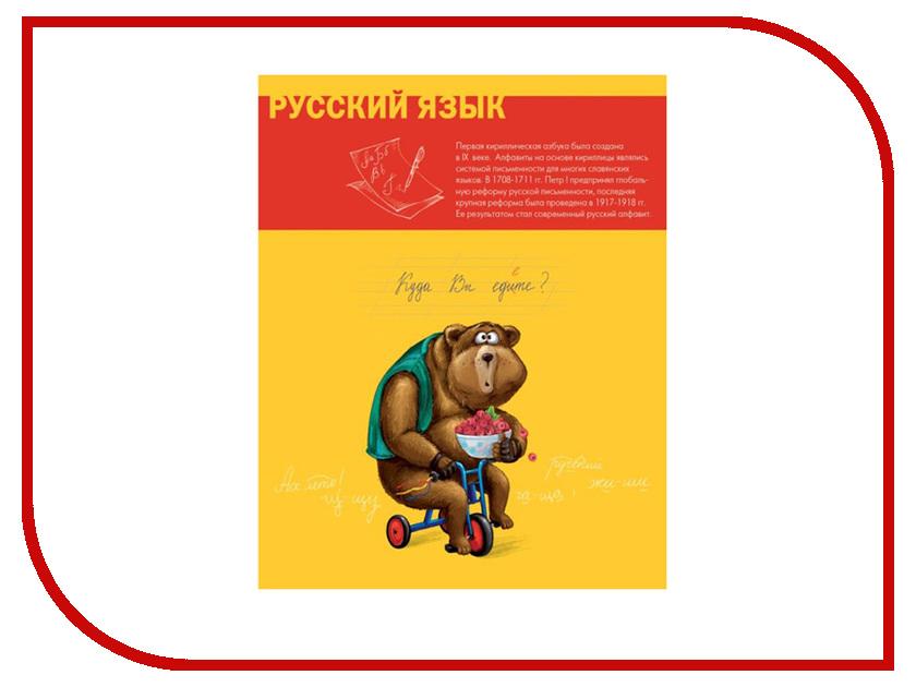 Тетрадь Феникс+ A5 48 листов Русский язык 44329 тетрадь феникс a5 48 листов литература 41088