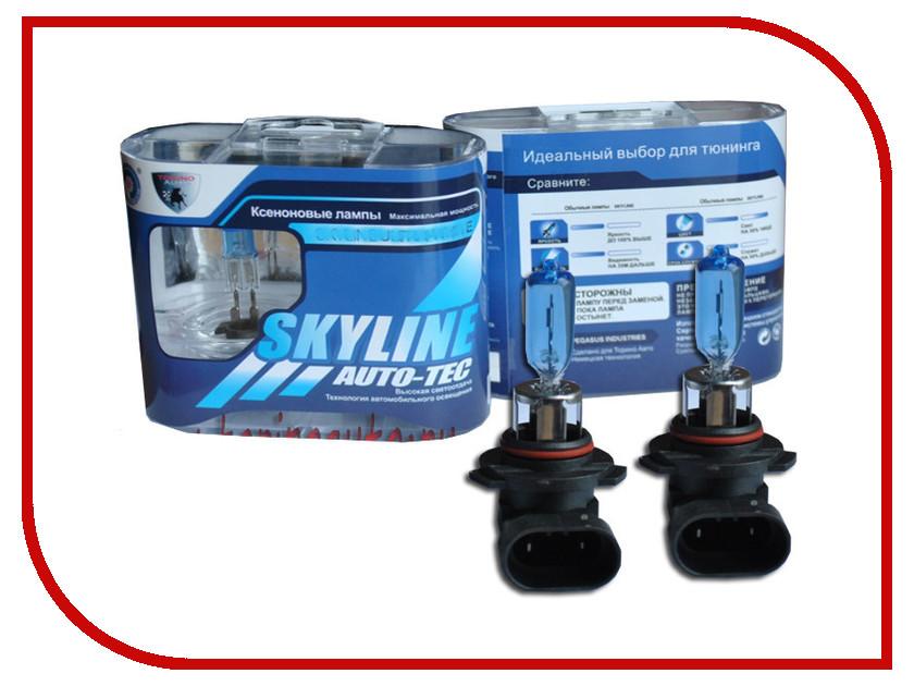 Лампа SkyLine HB3-9005 12V 65W 5500K Precious White (2 штуки)