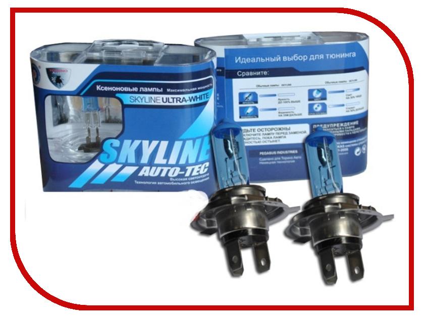 Лампа SkyLine H4 12V 60/55W P43T 3800K Ultra White (2 штуки)