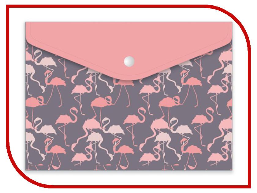 Папка для документов Феникс+ Фламинго А5 24x17cm 46748 учебники феникс история для бакалавров
