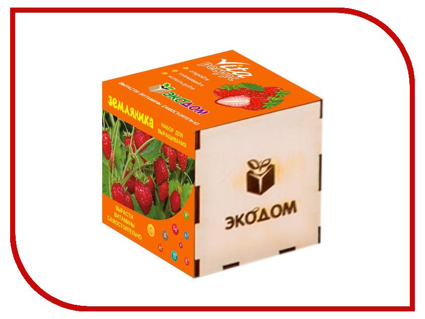 Растение ЭкоДом Земляника 1061843807019 растение экодом лаванда 1061843804452
