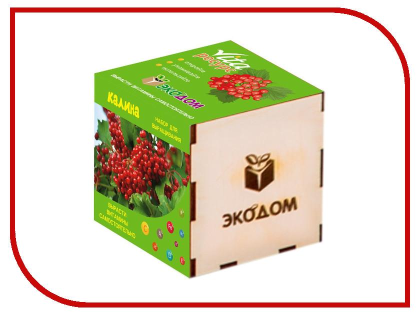 Растение ЭкоДом Калина 1061843806999 растение экодом лаванда 1061843804452
