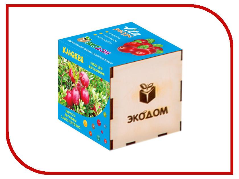 Растение ЭкоДом Клюква 1061843807002 растение экодом лаванда 1061843804452