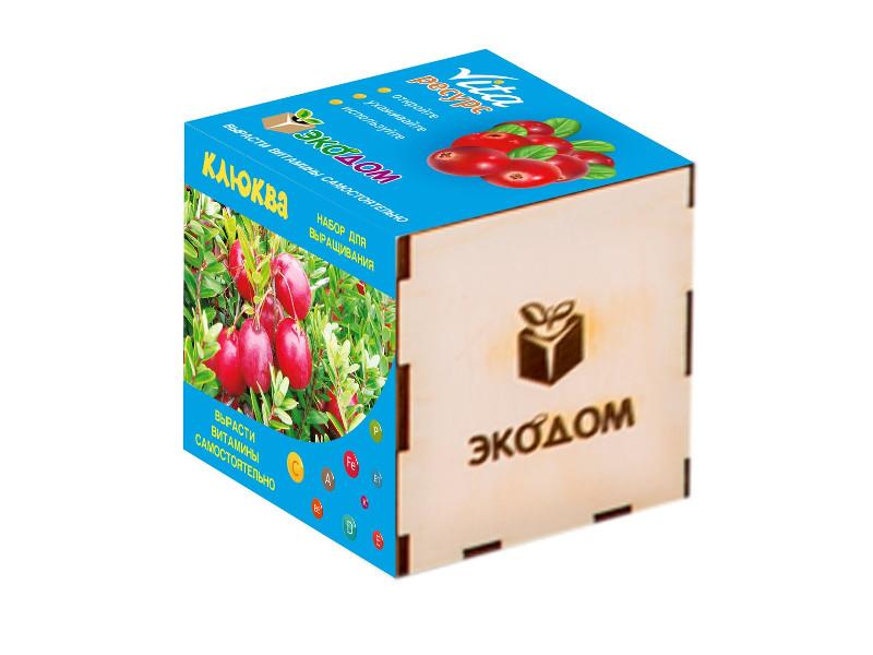 Растение ЭкоДом Клюква 1061843807002