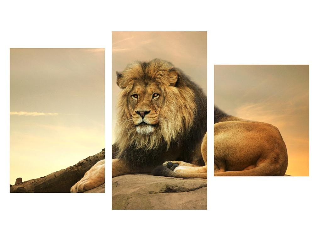 Картина Topposters 78x50cm XG-145 картина topposters 78x50cm xh 231