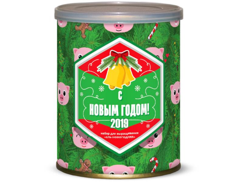 Растение BontiLand Свинка - символ года 2019 Ель 411791