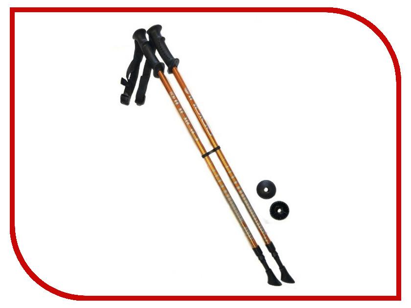 Палки Indigo SL-1-2 85-135cm 2 секции Orange универсальная коляска indigo isabel s 2 в 1 07 white blue