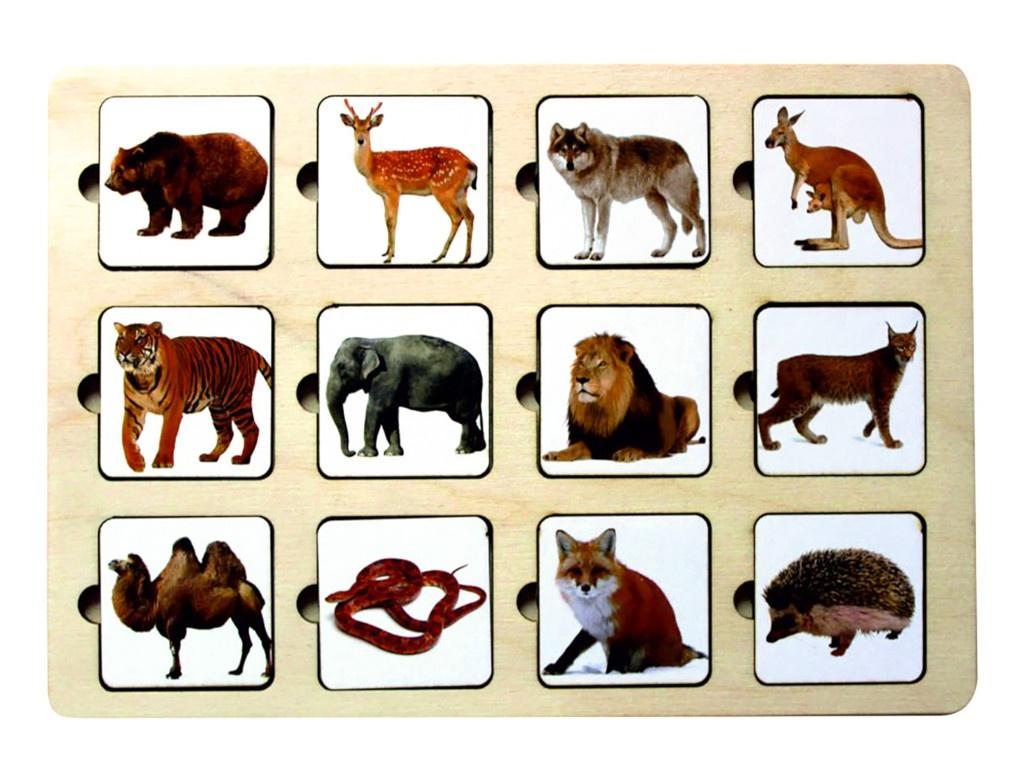 Головоломка Smile Decor Секретики Зоопарк 3141773 головоломка smile decor рамки вкладыши геометрические фигуры микс 1355515