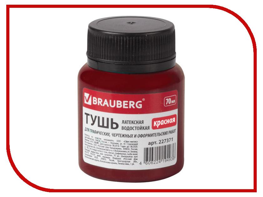 Тушь чертежная Brauberg 70ml Red 227371 maybelline 70ml