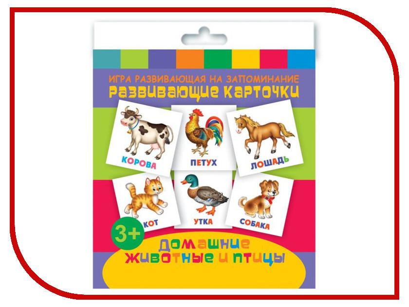 Обучающая книга Феникс+ Развивающие карточки Домашние животные и птицы 47687 домашние птицы