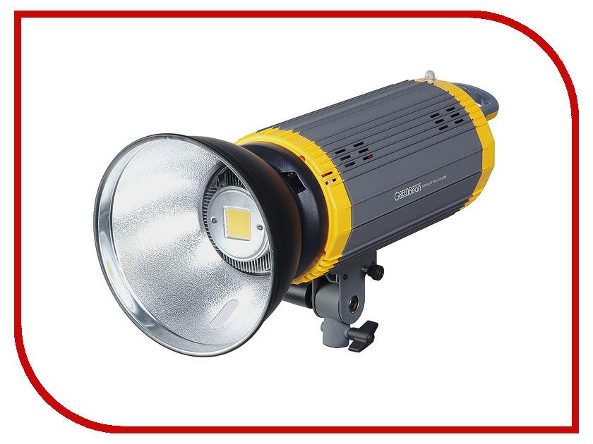 Осветитель GreenBean SunLight 100 LEDX3 BW осветитель greenbean fresnel 200 led x3 dmx 25244