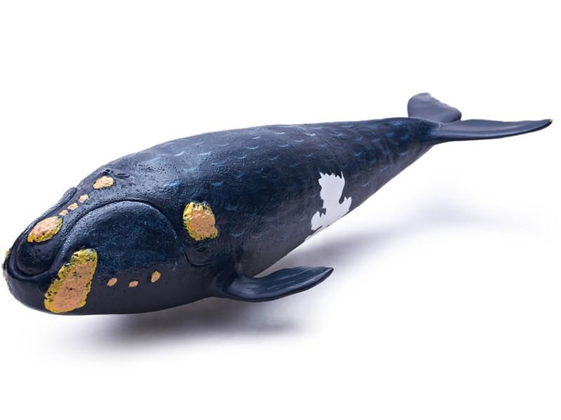 Игрушка Recur Японский кит 31cm RC16106S