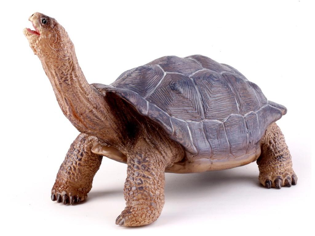 Игрушка Recur Гигантская черепаха 18.5cm RC16020W