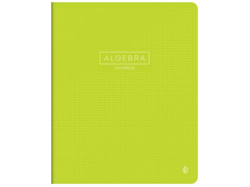 Тетрадь Greenwich Line Color Point Алгебра 48 листов EX48-21850 greenwich line тетрадь nice flowers 48 листов в клетку цвет серый