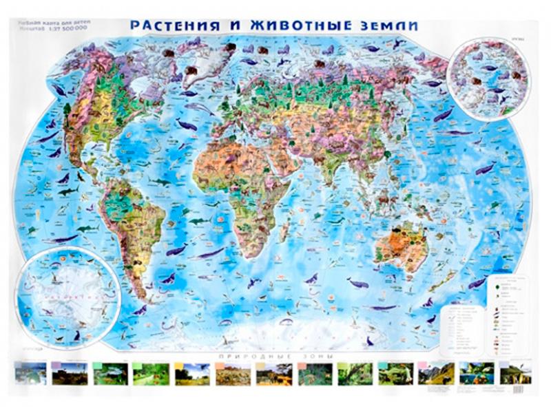 Карта Глобусный Мир Растения и животные земли 20072