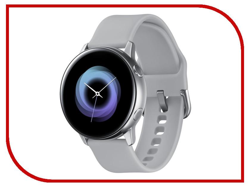 Купить Умные часы Samsung Galaxy Watch Active SM-R500 Grey SM-R500NZSASER