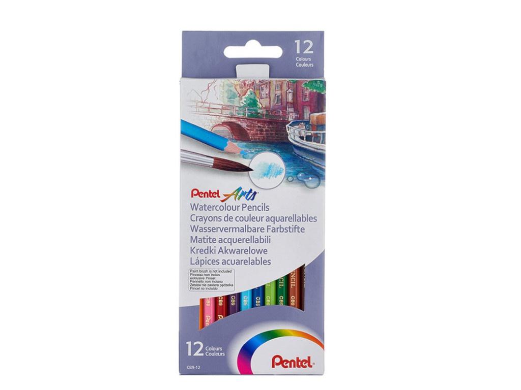 Карандаши цветные Pentel Colour Pencils 12 цветов CB9-12