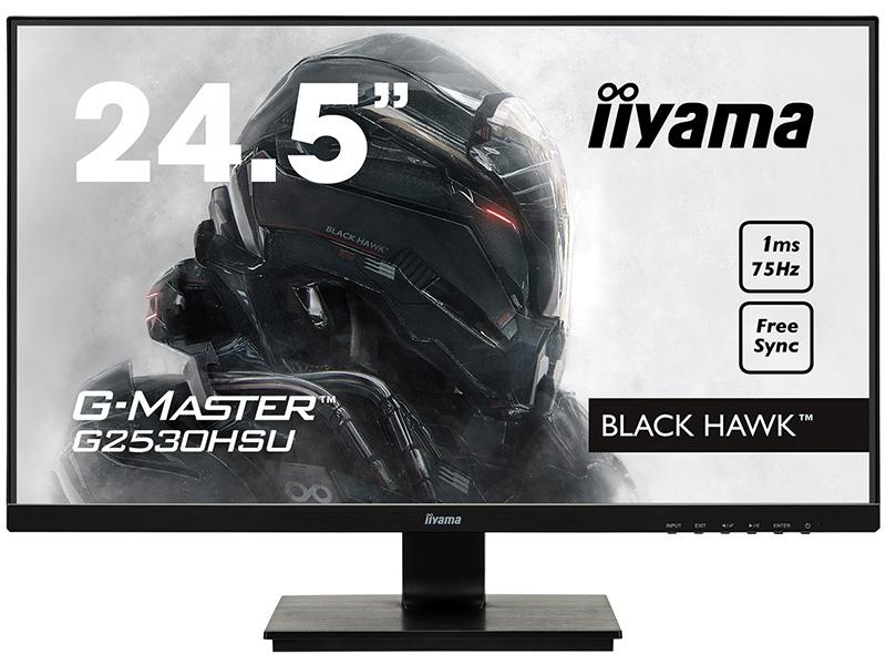 Zakazat.ru: Монитор Iiyama G-Master G2530HSU-1
