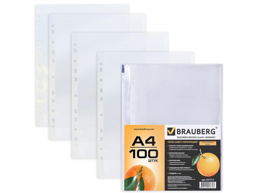 Папка Brauberg А4 100шт 221713