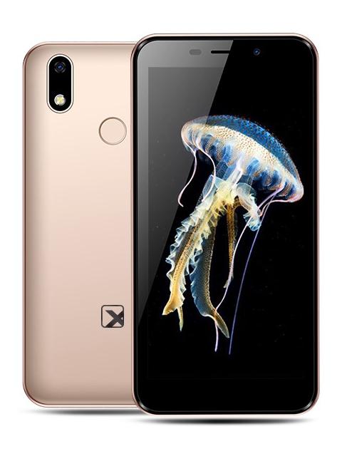 Сотовый телефон teXet TM-5081 Gold сотовый телефон texet tm 101