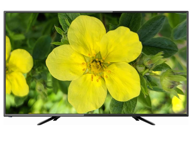 Телевизор HARTENS HTV-40F01-T2C/A4