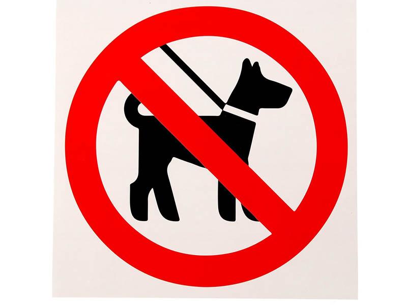 Наклейка Mashinokom С животными запрещено 10x10cm VRO007