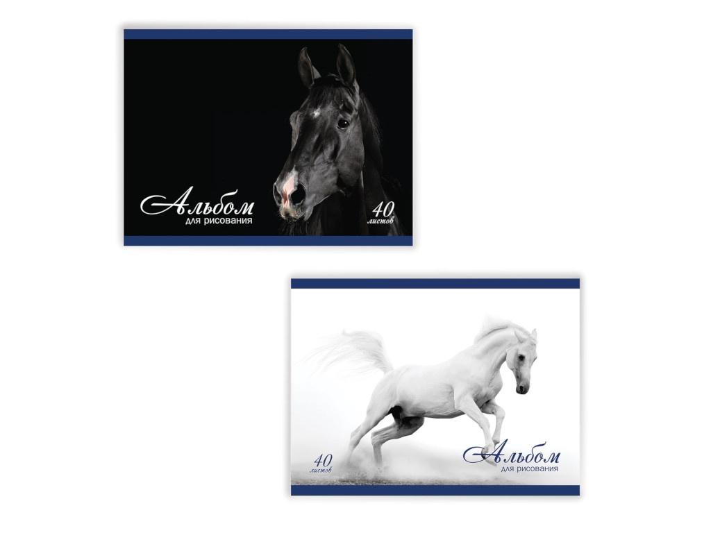 Альбом для рисования Brauberg Благородные кони A4 40 листов 103728