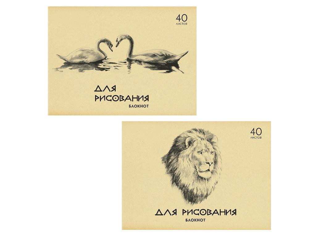 Блокнот для рисования Пифагор A4 40 листов 126962