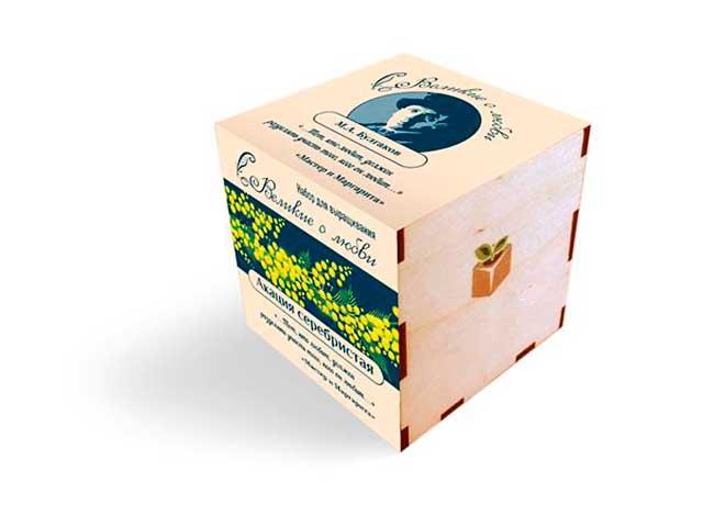 Растение Экокуб Акация 1061843808177
