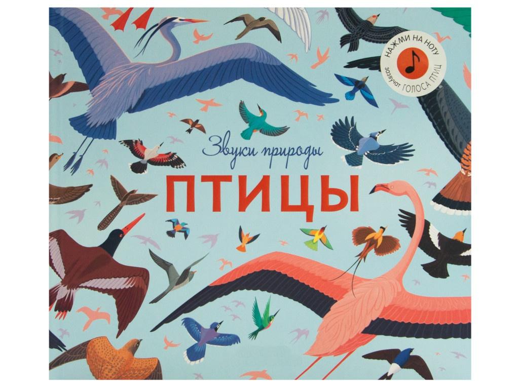 Пособие Книжка Мозаика-Синтез Звуки природы. Птицы МС11481