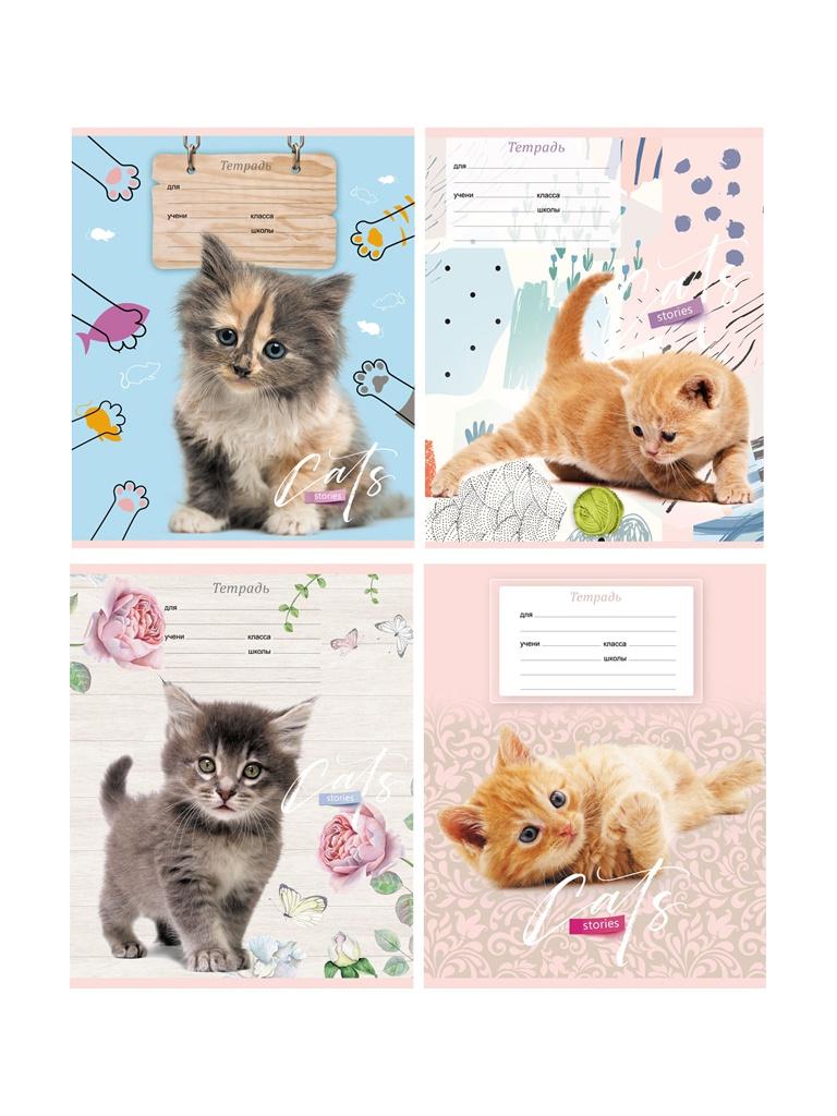 Тетрадь BG Cat Story А5 12 листов Т5ск12 7015