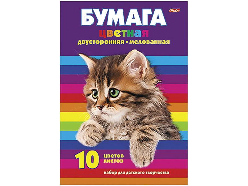 Цветная бумага Hatber Котенок А4 10 листов цветов 10Бц4м_09623