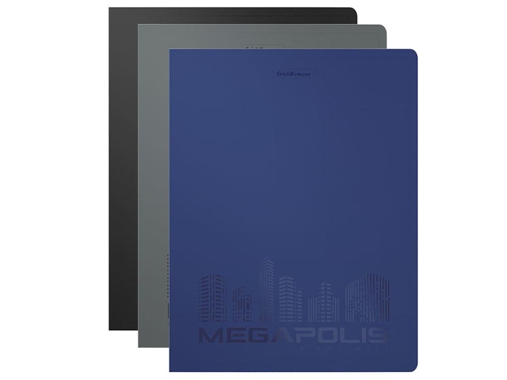 Папка ErichKrause Megapolis 17mm c пружинным скоросшивателем 50132