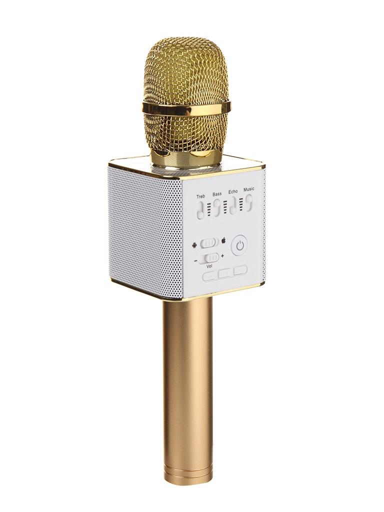 Караоке Handheld KTV Q9G Gold