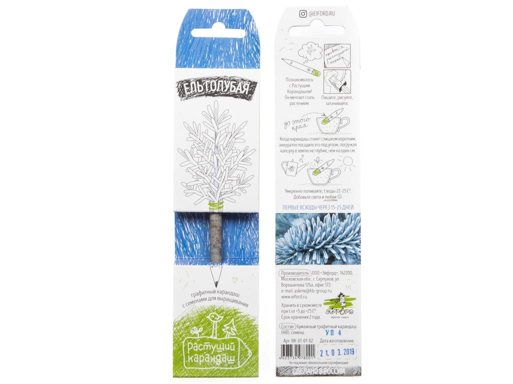 Растение Растущий карандаш Голубая ель RK-01-01-02