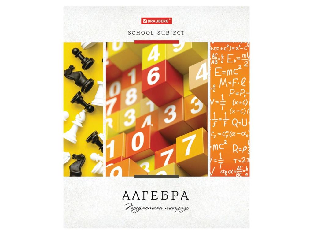 Тетрадь предметная Brauberg Ученье свет Алгебра 48 листов 403526 тетрадь предметная brauberg ученье свет литература 48 листов 403532
