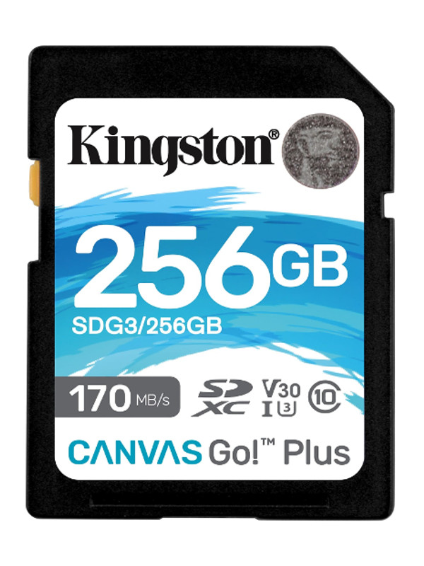 Карта памяти 256Gb - Kingston SDXC 170R C10 UHS-I U3 V30 Canvas Go Plus SDG3/256GB