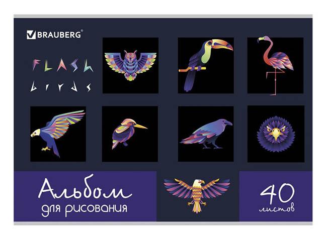 Альбом для рисования Brauberg Птицы 202x285mm А4 40 листов 105098