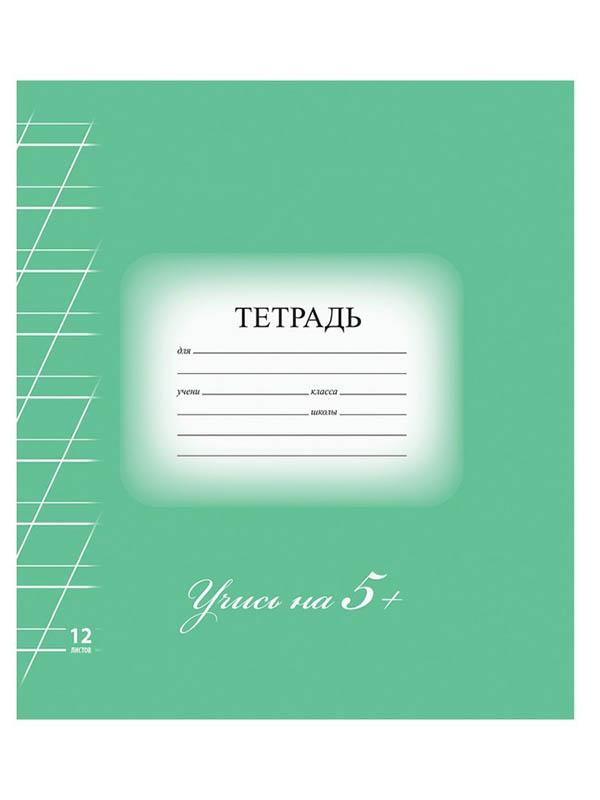 Тетрадь Brauberg Эко 5-КА 12 листов Green 104762