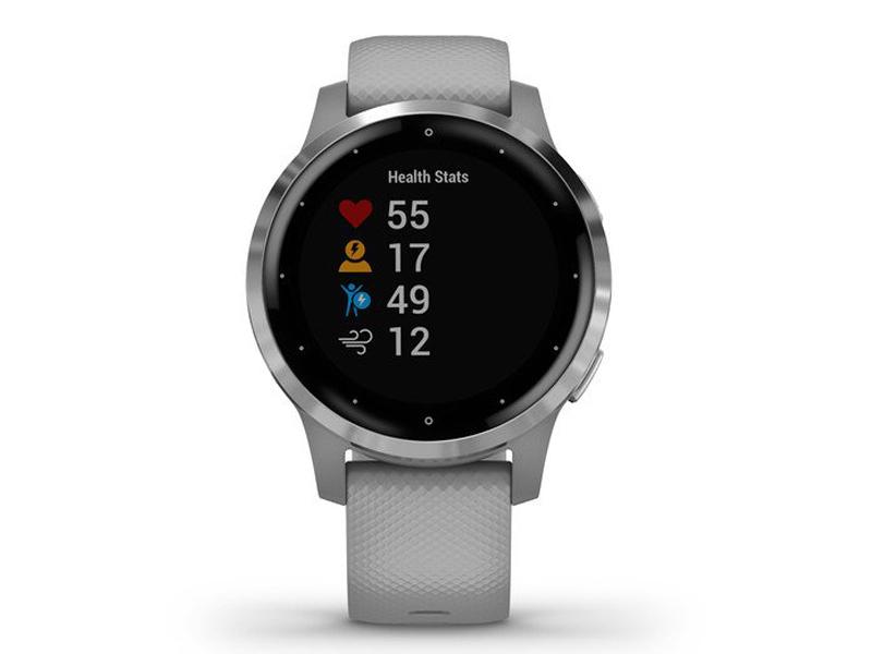 Часы Garmin Vivoactive 4s Grey-Silver 010-02172-03