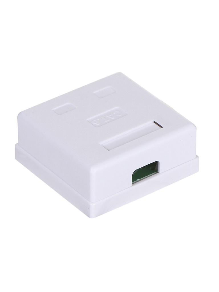 Розетка ATcom 2 порта RJ45 UTP Cat.6 накладная White AT0252