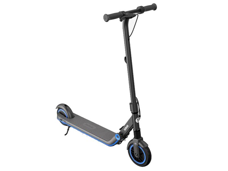 Электросамокат Ninebot By Segway eKickScooter Zing E10 Black