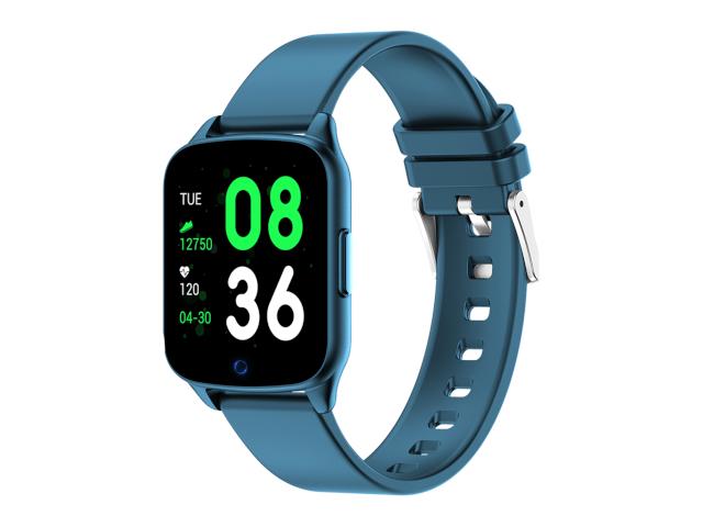 Умные часы KingWear KW17 Pro Blue