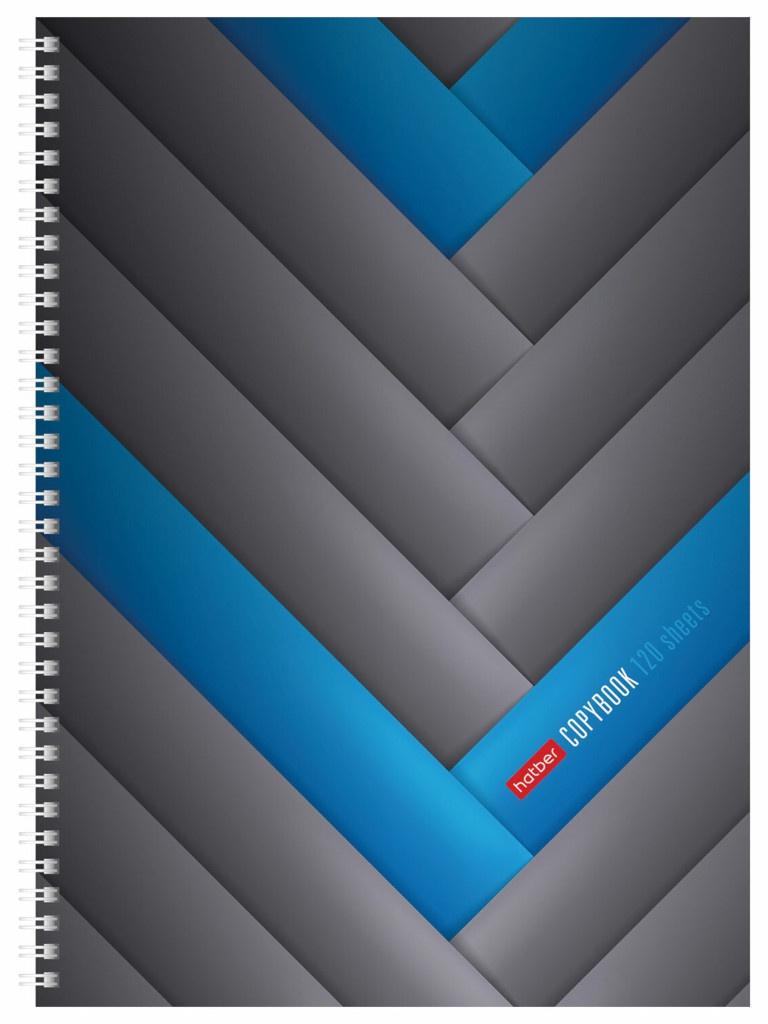 Тетрадь Hatber Blue Line A4 120 листов 120Тт4В1гр_2086